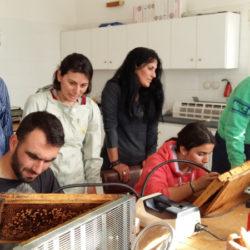 Beekeeping Seminar 2016